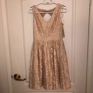 Eliza J Pink Blush Belted Lace Fit & Flare Dress